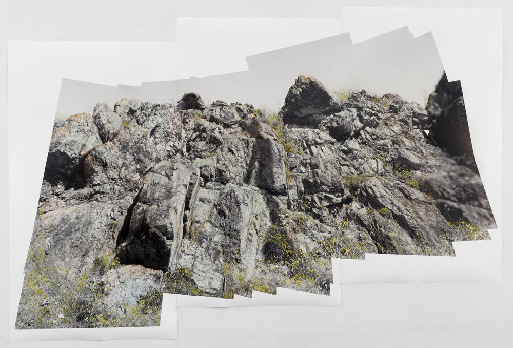 "© Theresa Ganz  Serpentine Pano                    watercolor on archival pigment print, 47"" x 72"", 2016"