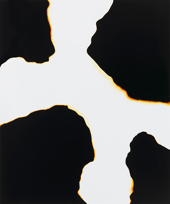 © Marco Breuer  Untitled , unique print