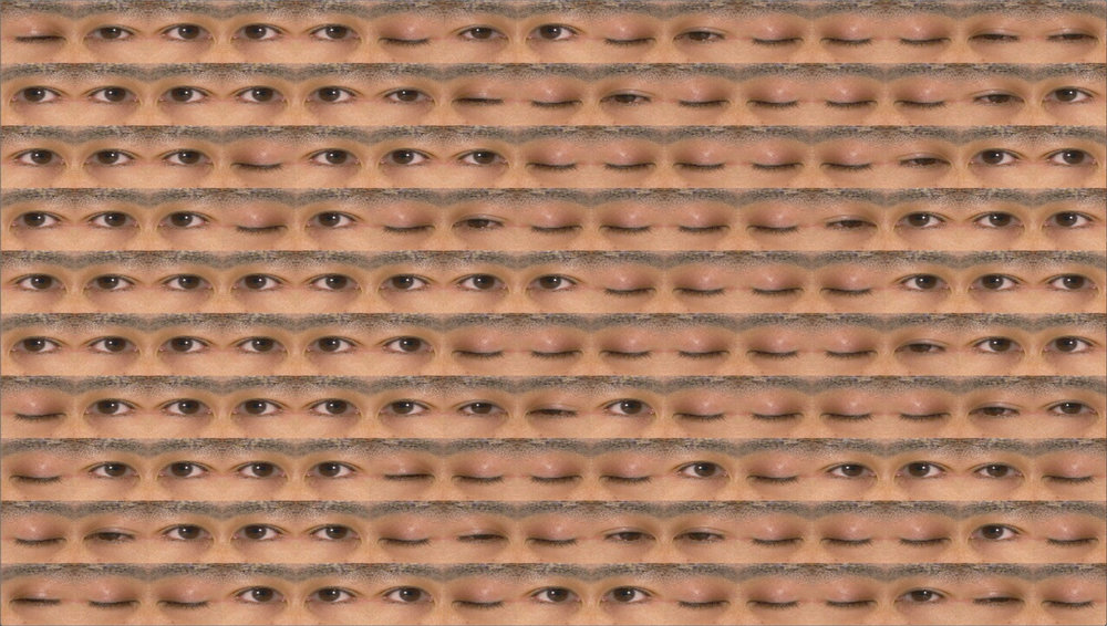 ©  George Legrady  Blink (2006)  {A software generated animation that consists of a matrix of eyes that open and close by taking stock of their neighbors' actions. Sometimes they want to be like their neighbors other times they decide against it}