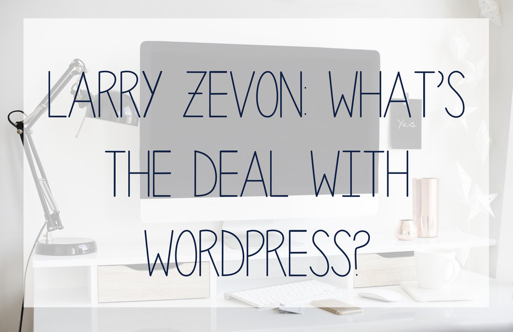 And in-depth review of wordpress websites and when you might need one for your business.