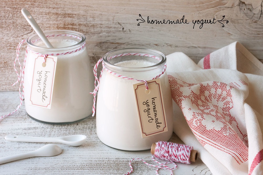 Homemade yogurt — sprig of thyme