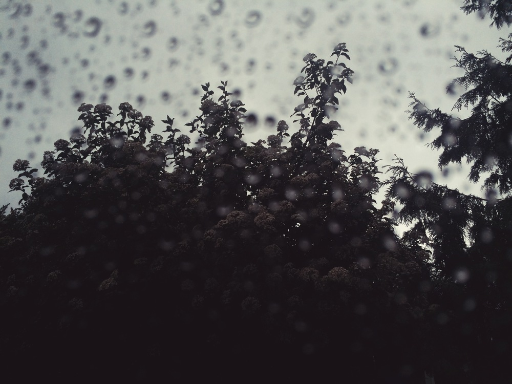 The rain falls now as it's always done elsewhere,