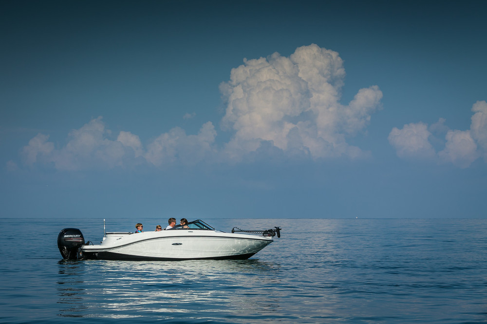 2015-SeaRay-19-SPX-fish-1965-X2.jpg