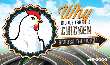 ChickenWeb.jpg