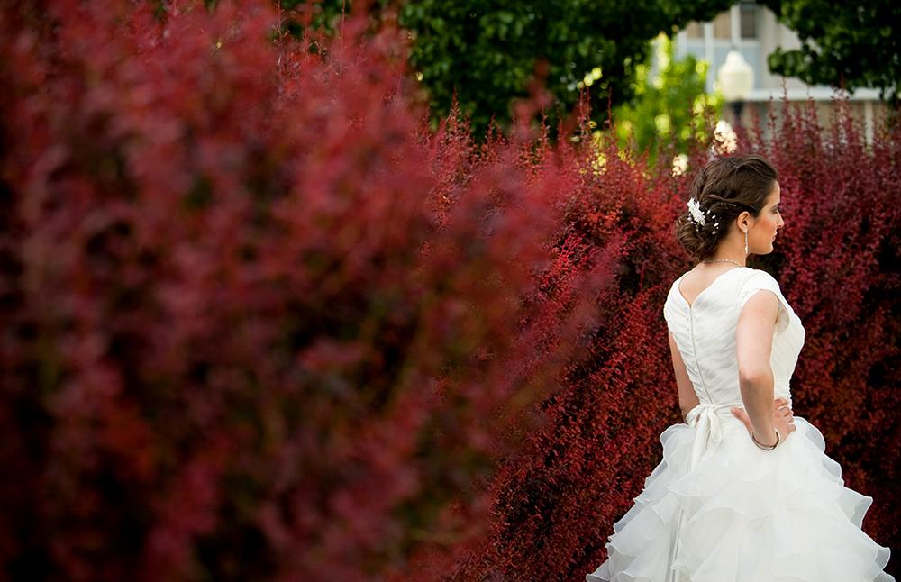 bridals17.jpg