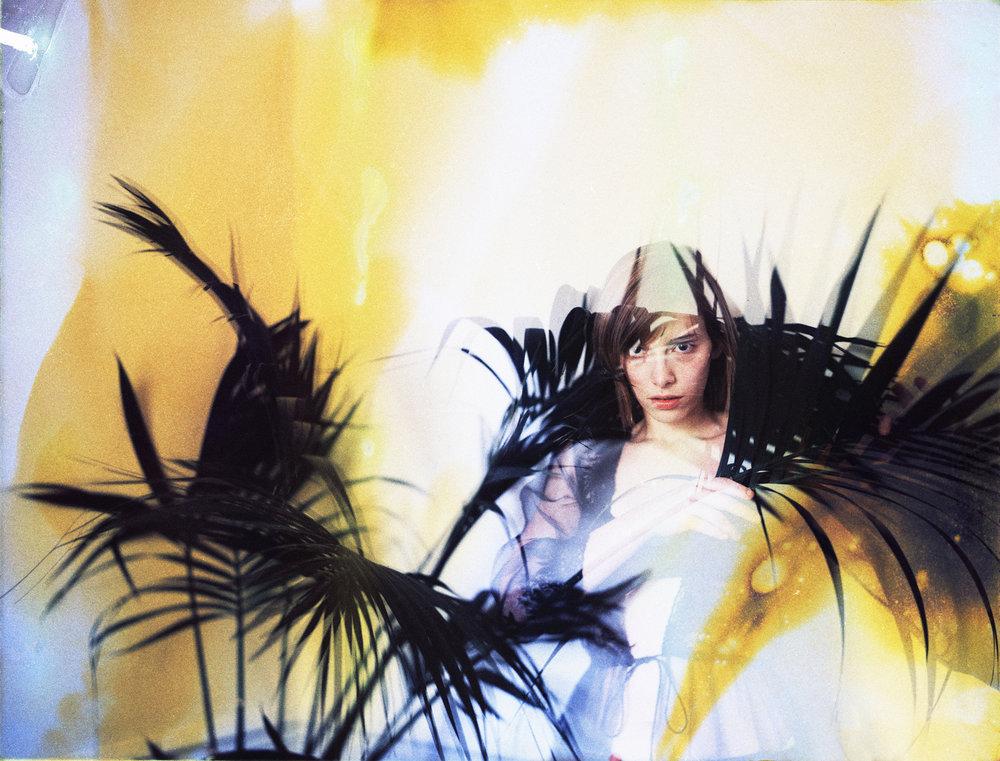 """""""Arbres Aux Oiseaux"""" by Charlotte Skurzak"""
