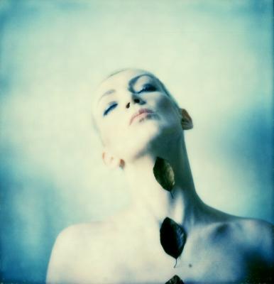 Image by  Dee Elegia