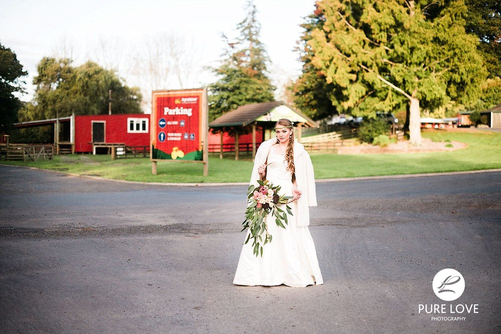 Agrodome Wedding