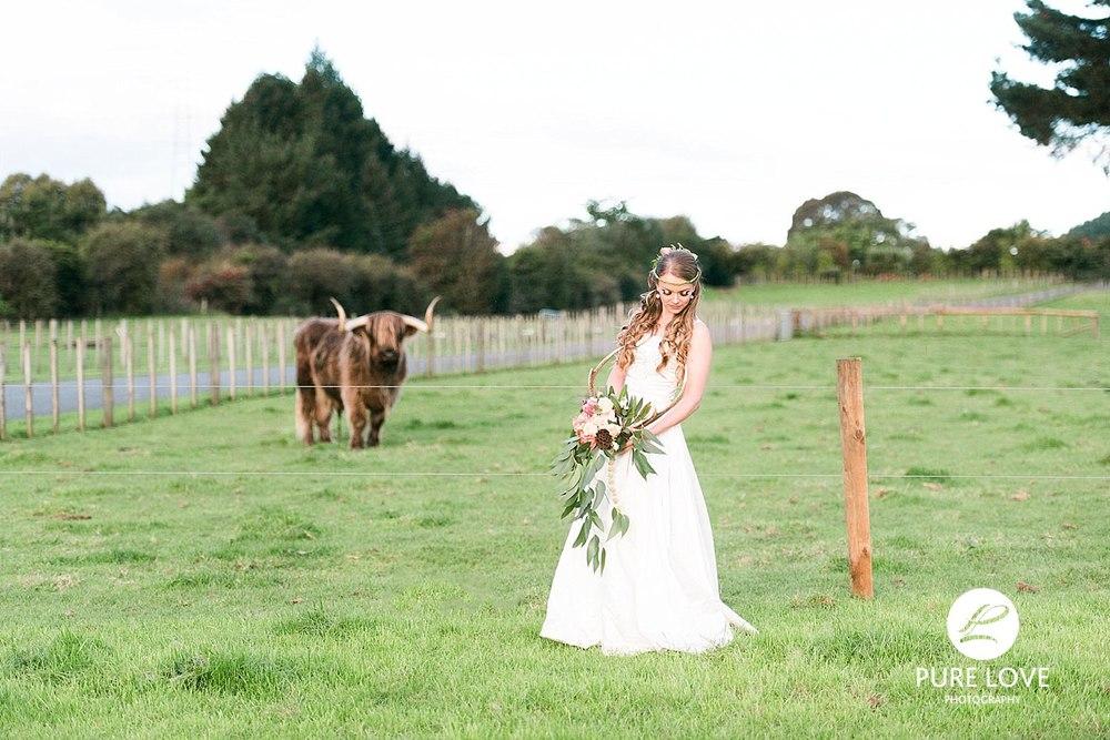 Agrodome Rotorua Bride. Photo with Bull