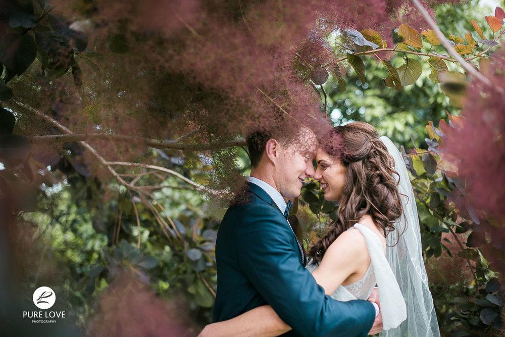 PureLovePhotography - Hamilton Gardens