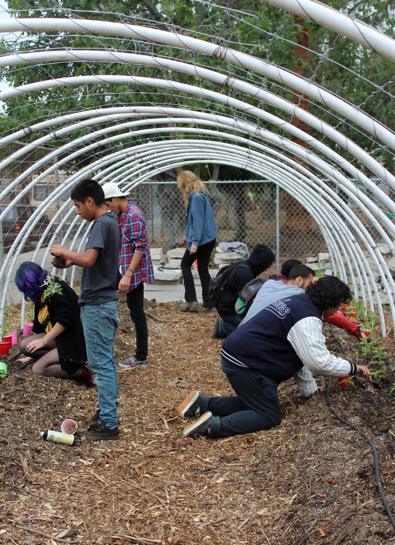 Building garden 5-2015 v3.jpg