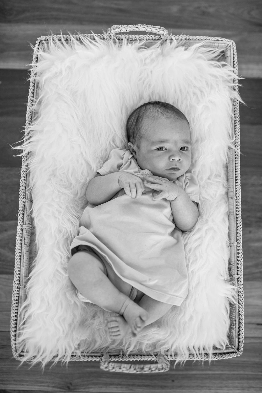 Zara newborn LR-2.jpg