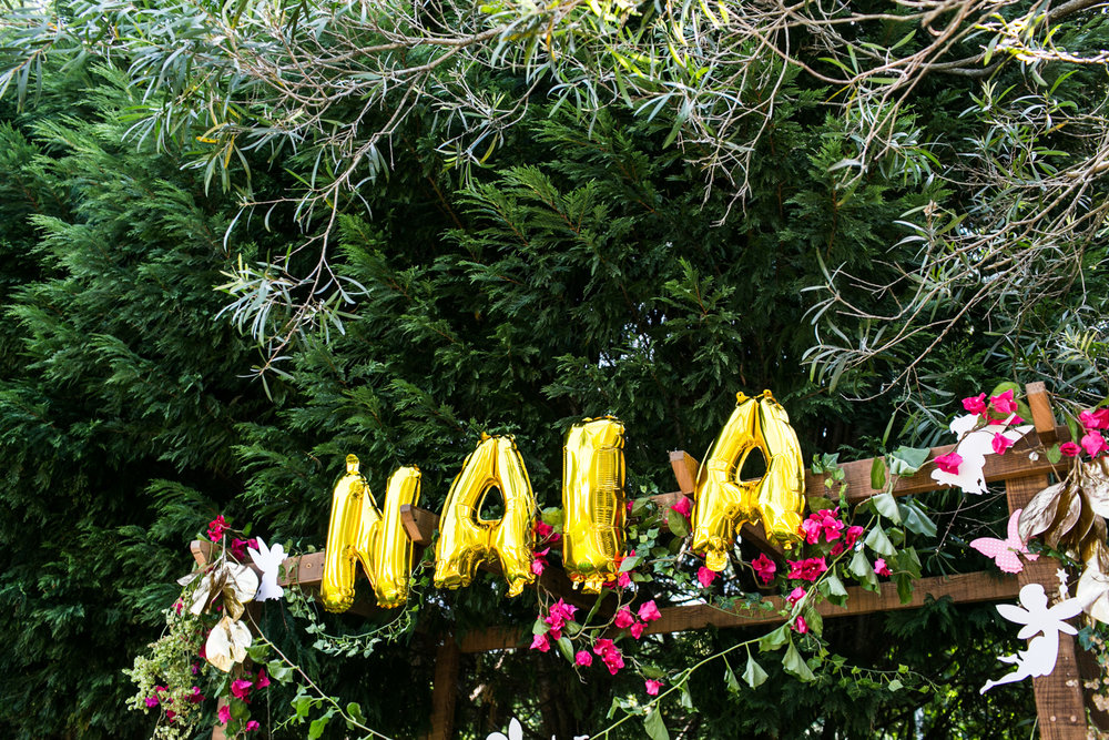 Naia fairy party LR-74.jpg