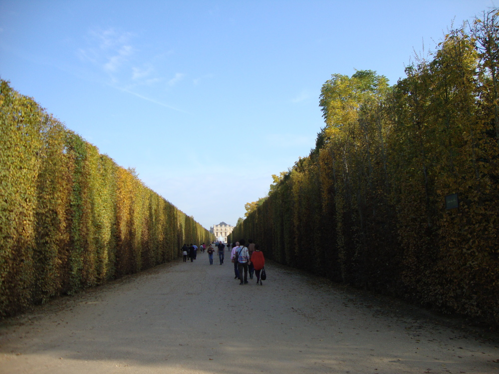 garden at palace of Versailles - Paris 2012