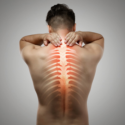 The muscles of the mid back can be a huge source of mid back pain.