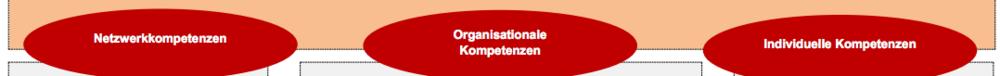 ©  Christian Gärtner   Ausschnitt aus einem der Arbeitspapiere. Im Zentrum der Arbeit stehen die drei Kompetenzarten Netzwerkkompetenz, organisationale und individuelle Kompetenz.