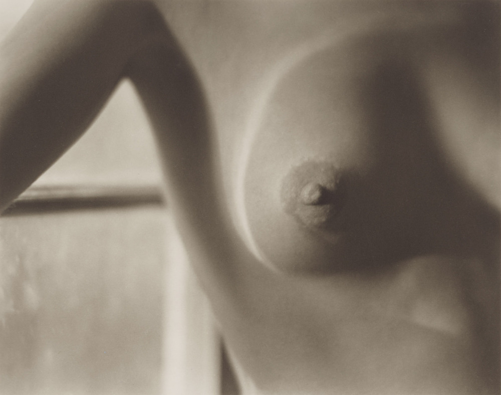 Edward Weston, Nude,1920 - Printed 1977