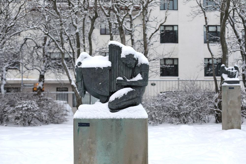 winter-white-snow-snowday-iceland-reykjavik-einarjonsson