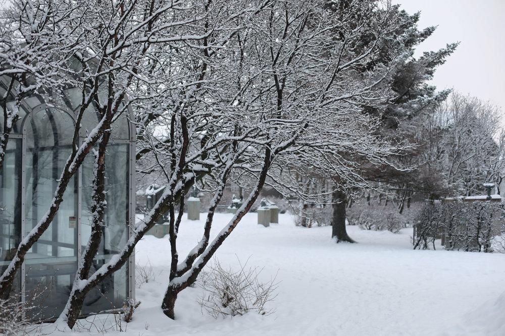 winter-white-snow-snowday-iceland-reykjavik-einarjonsson-höggmyndasafn
