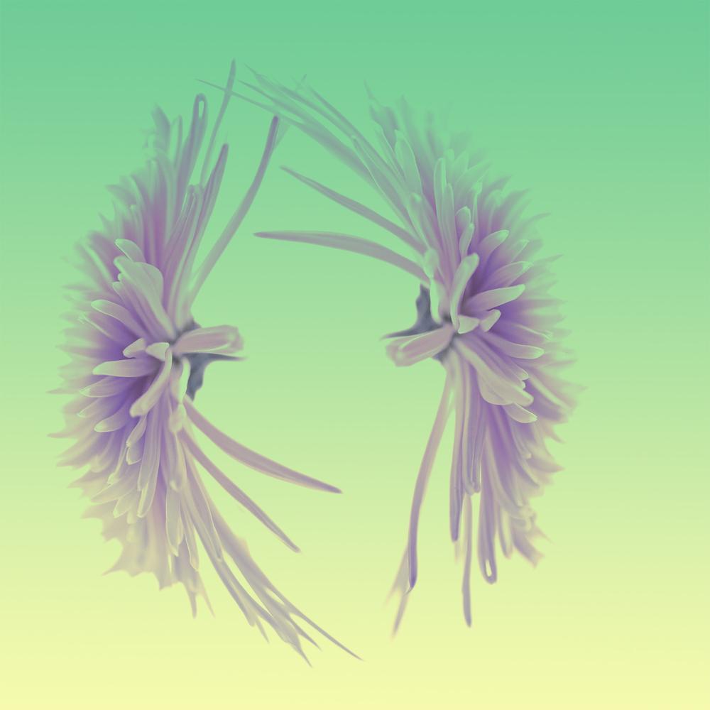 botanical_0101.jpg