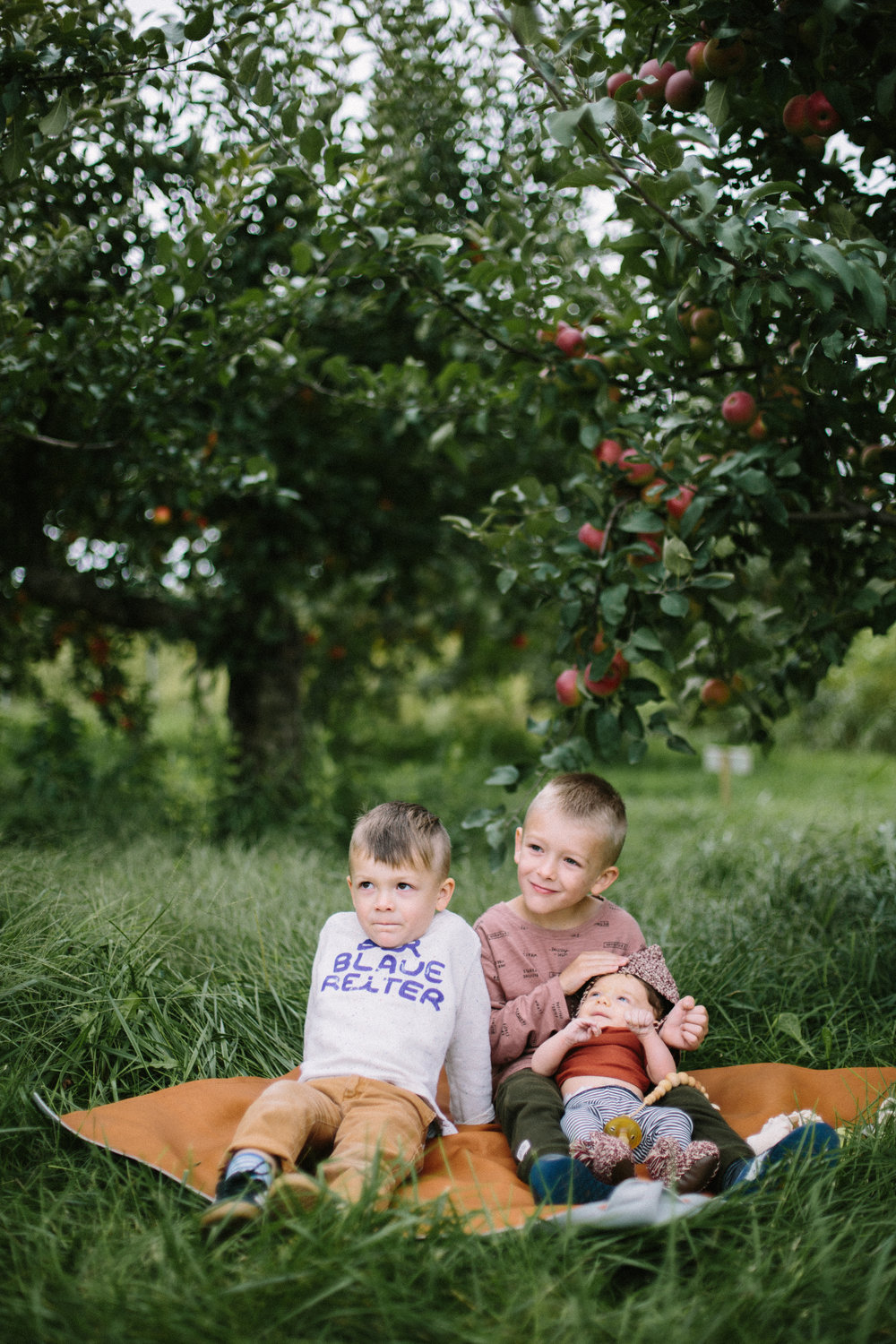 apple orchard 2018-16.jpg