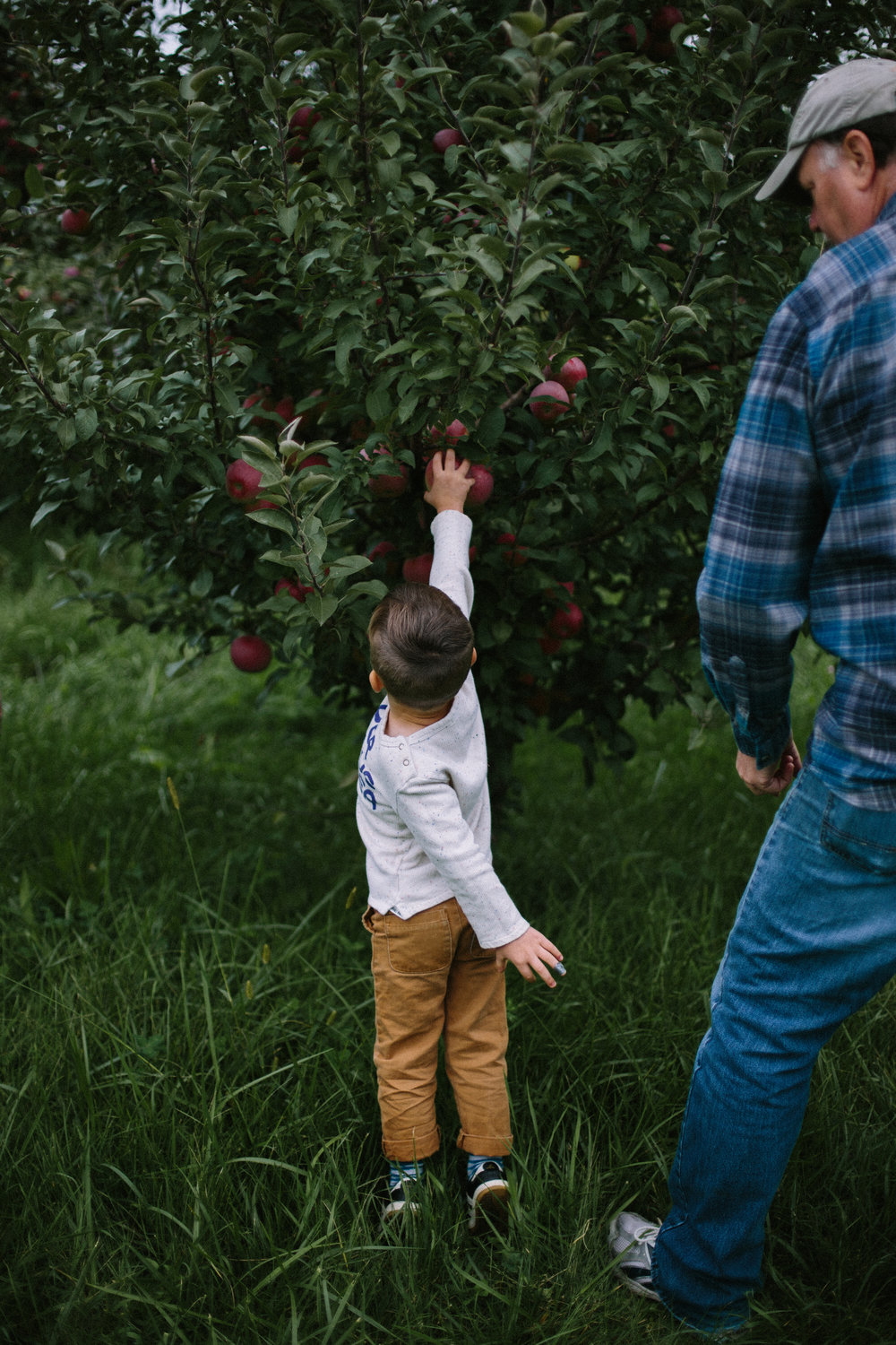 apple orchard 2018-30.jpg