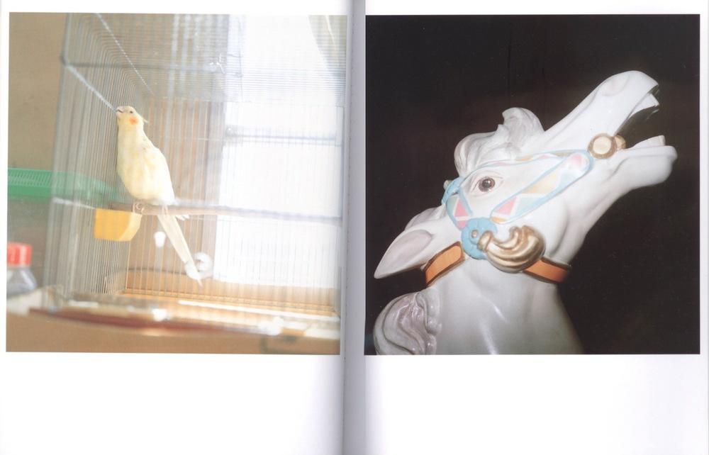 All images © 2001 Rinko Kawauchi.