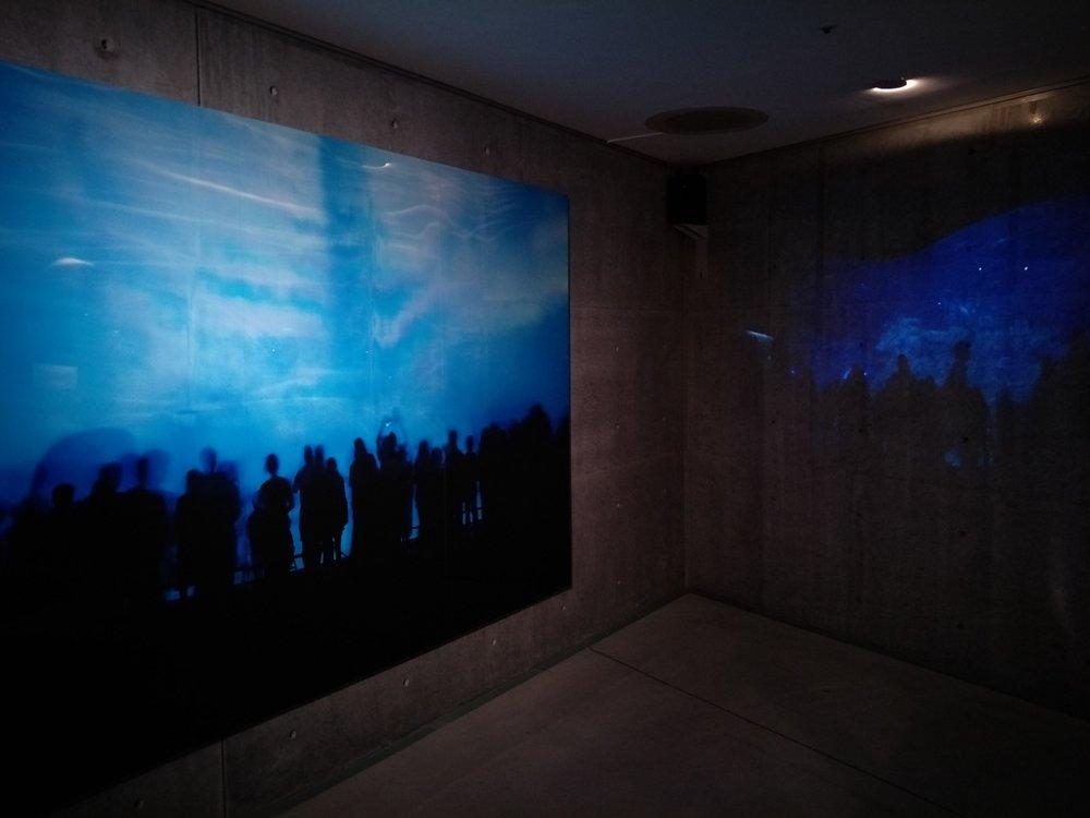 朴ミナ「ブルーの形態」