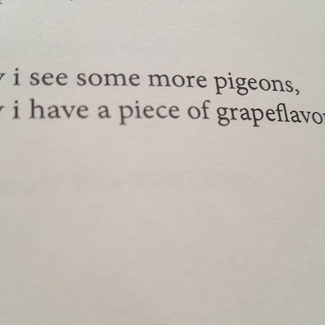 may i see some more pigeons, (#blepharism) (#34) H_NGM_N Books