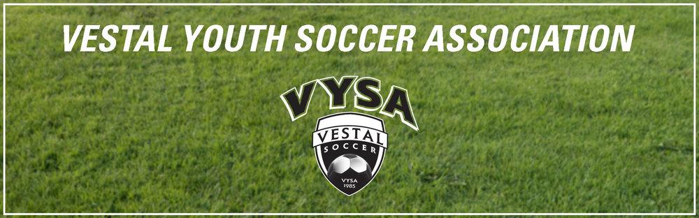 vysa-banner-2.jpg