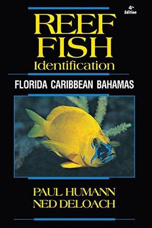 fish+ID.jpg