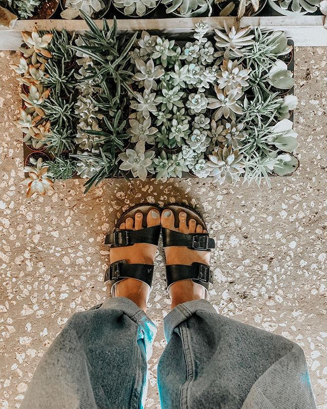 The classic tuck and roll. Raise your hand if you wore your jeans like this as a kid! 🙋🏼♀️ #denimcontent #andsucculents #tuckandroll #fashion #succsandshoes