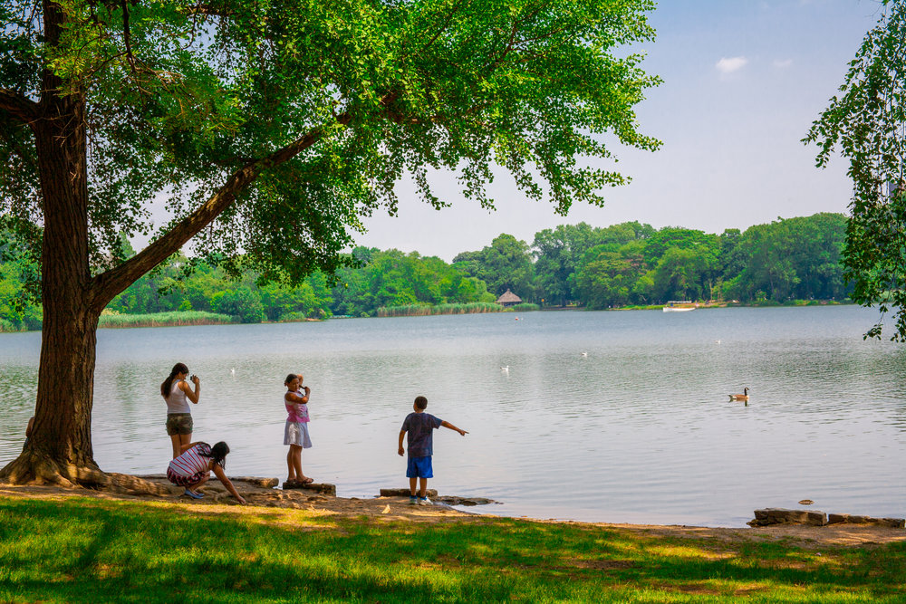 Lets_See_NY_Propsect_Park_Summer-3.jpg