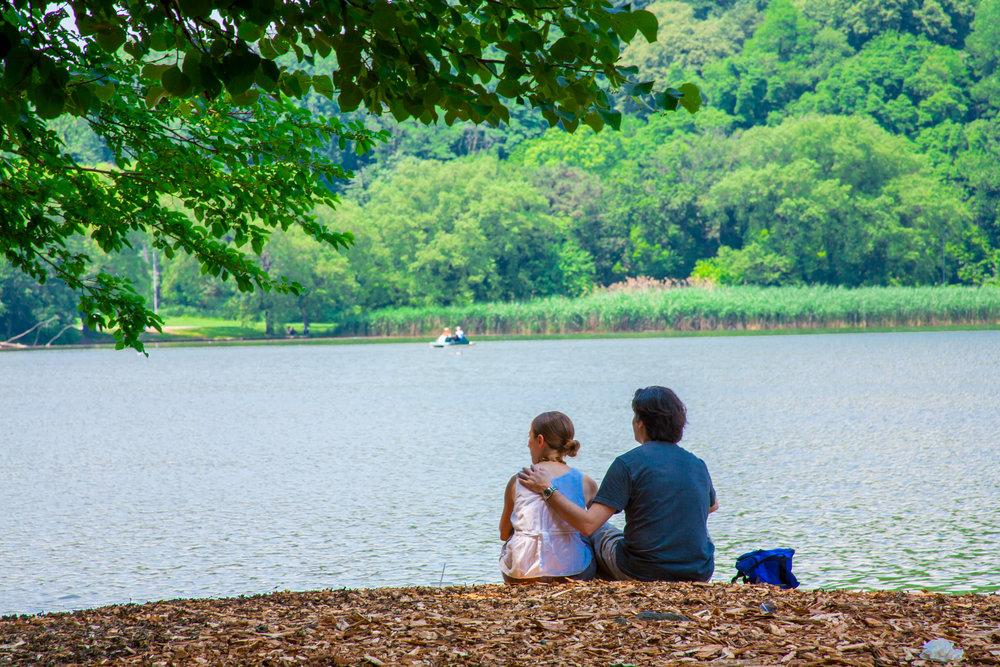 Lets_See_NY_Propsect_Park_Summer-7.jpg