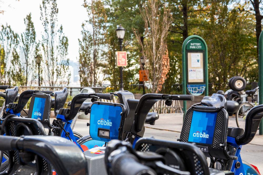 LSNY_Battery-Park-11.jpg