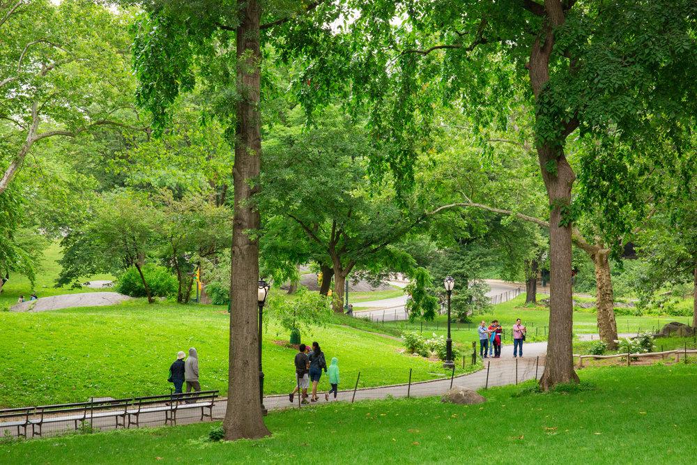 LSNY_Central_Park-6.jpg