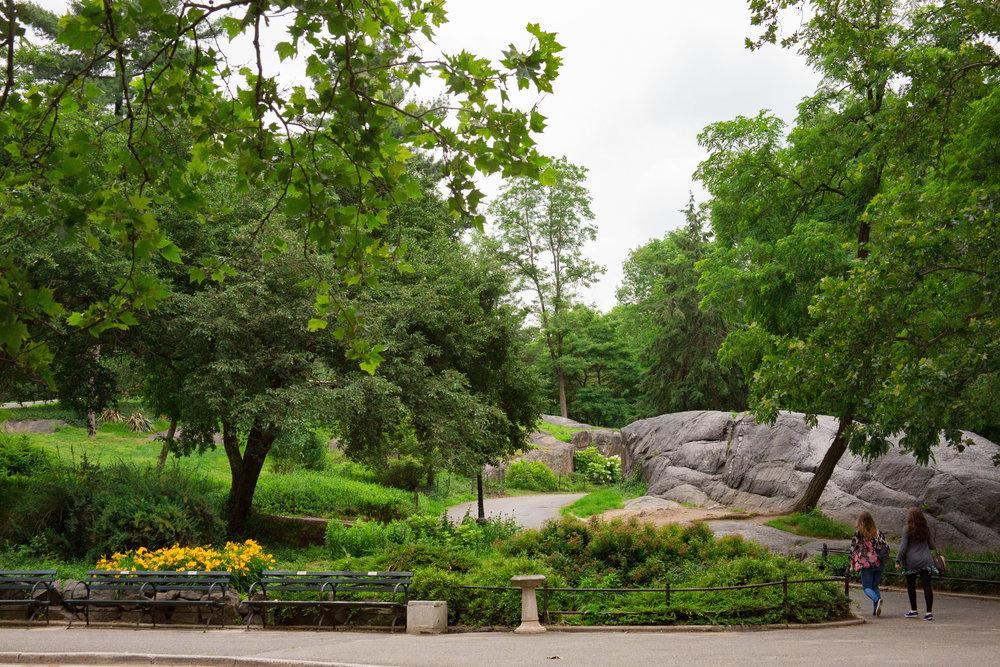 LSNY_Central_Park-8.jpg