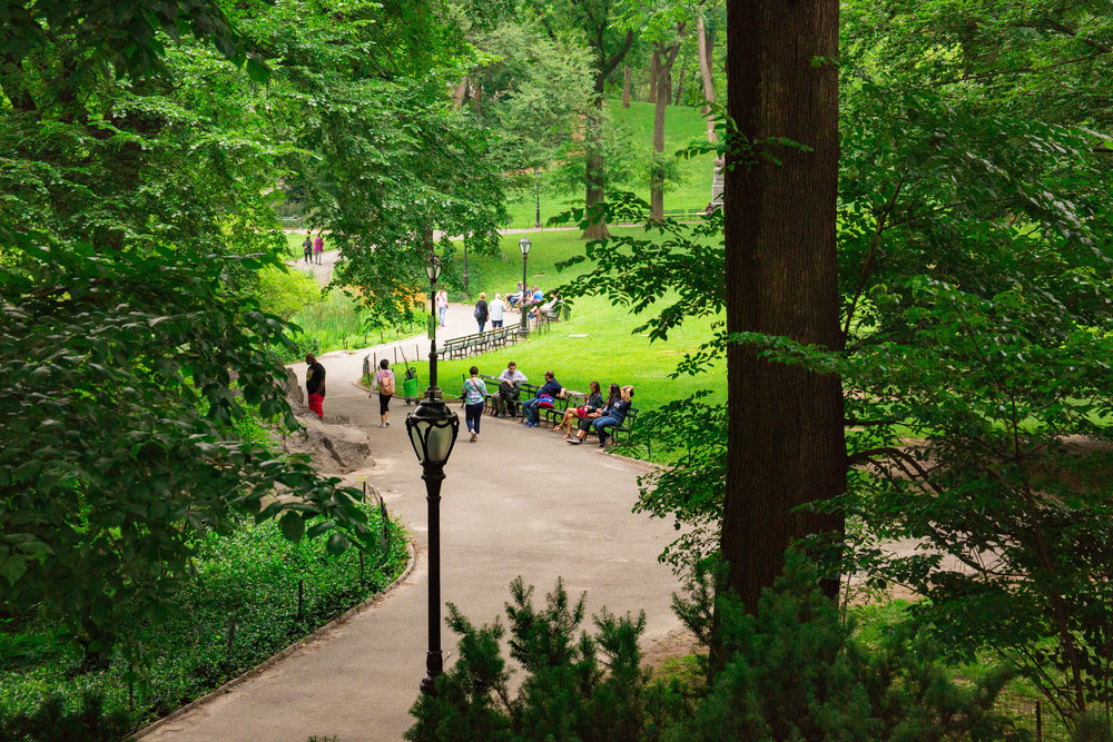 LSNY_Central_Park-13.jpg