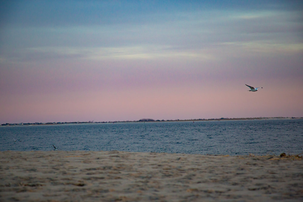 LSNY_Coney_Island_Sunset-3.jpg