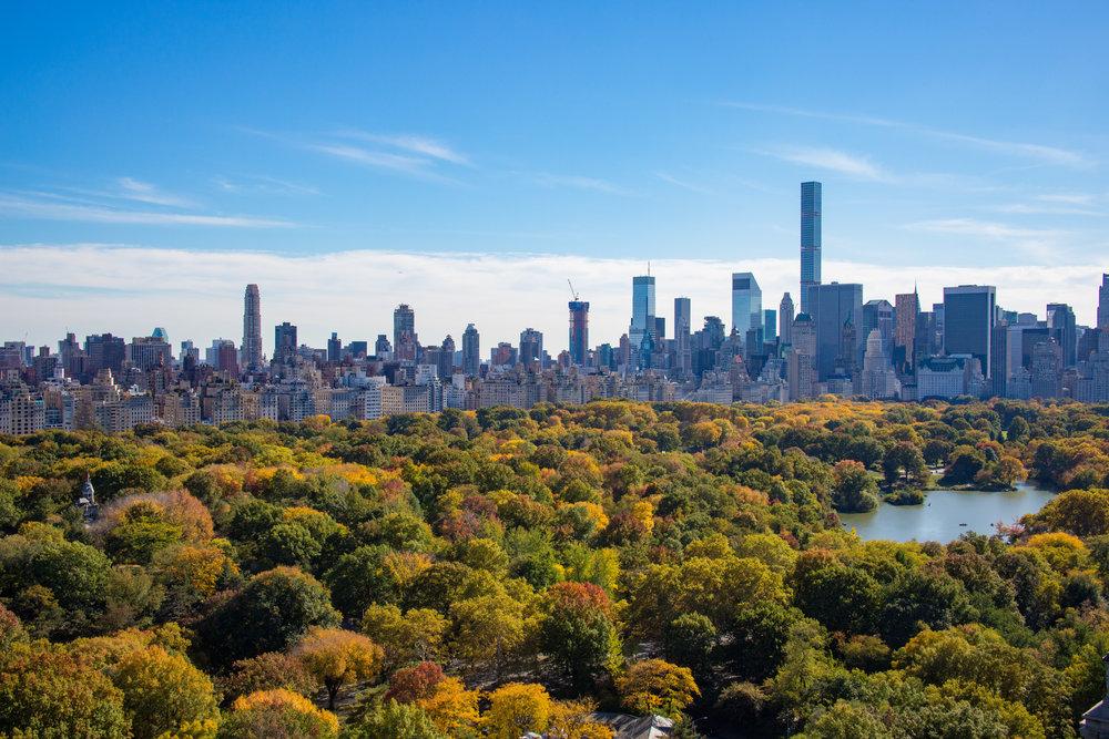 LSNY_Central_Park_Views-5.jpg