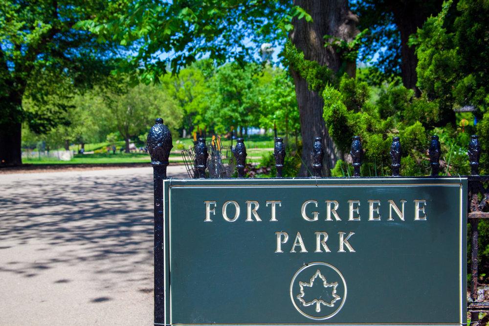 LSNY_Fort_Greene_Park-3.jpg