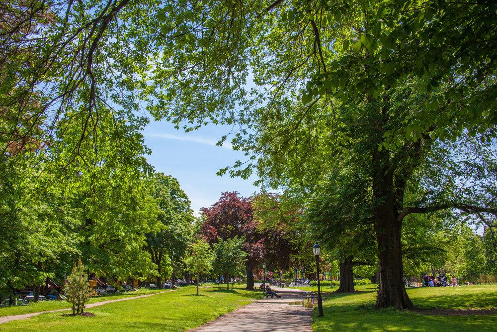 LSNY_Fort_Greene_Park-20.jpg