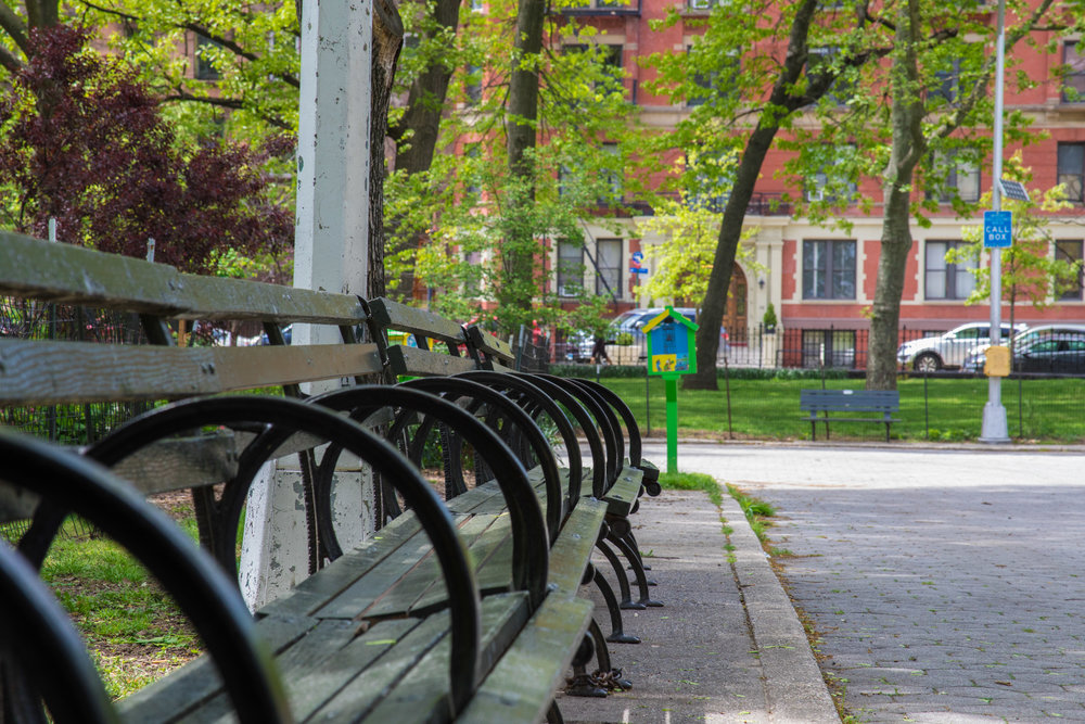 LSNY_Harlem-20.jpg