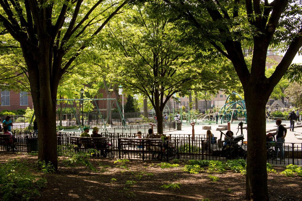 LSNY_Park_Slope-11.jpg