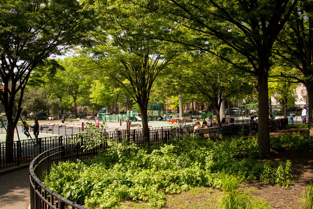 LSNY_Park_Slope-13.jpg
