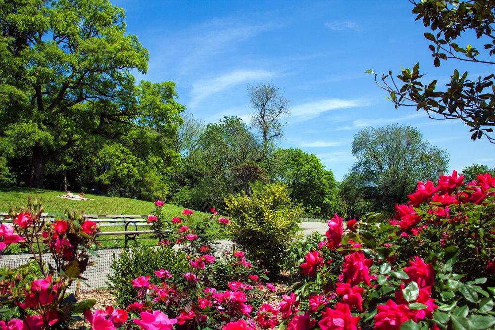 Fort Green Park -