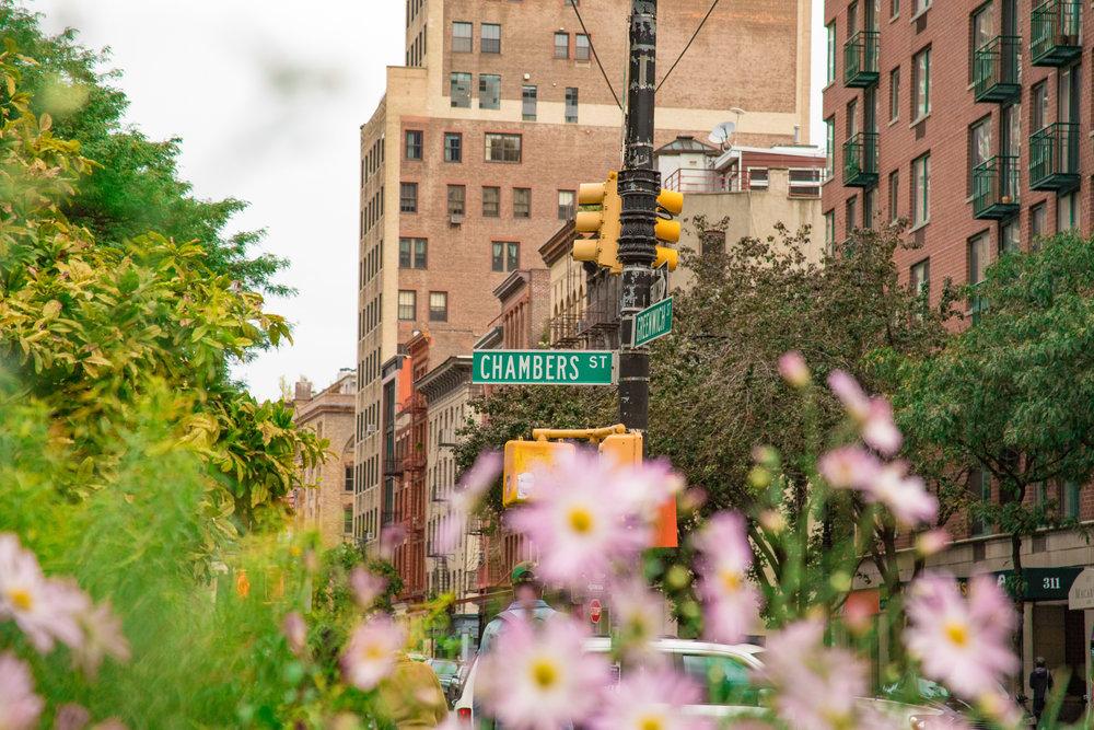 LSNY_Tribeca-7.jpg