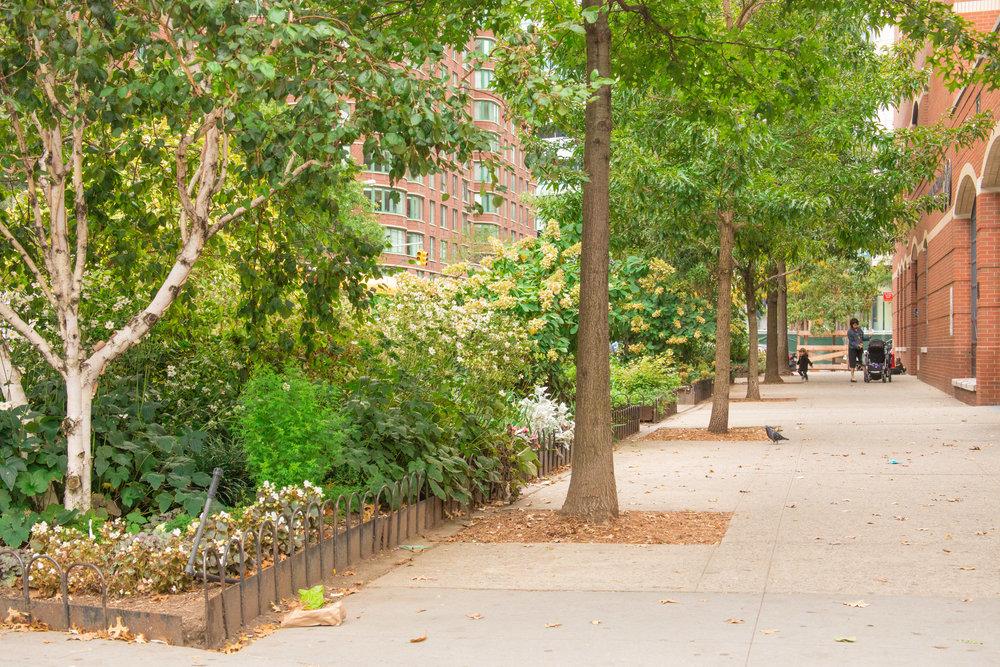 LSNY_Tribeca-22.jpg