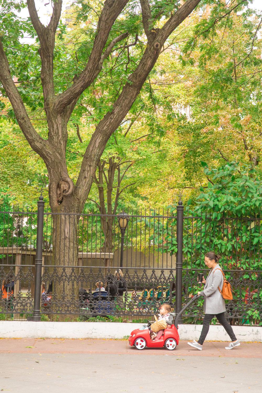 LSNY_Tribeca-30.jpg