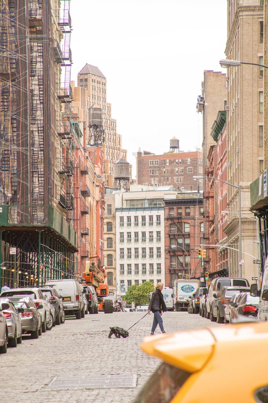 LSNY_Tribeca-111.jpg